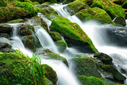 Steiler Bergbach mit moosbewachsenen Steinen, Langzeitbelichtung